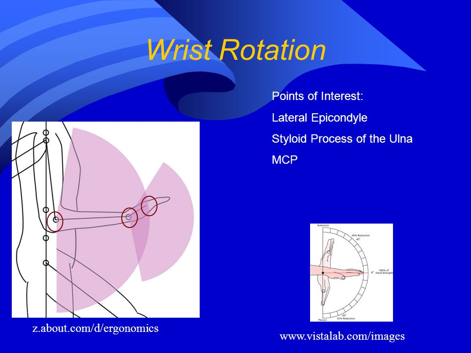 Wrist Rotation Points of Interest: Lateral Epicondyle