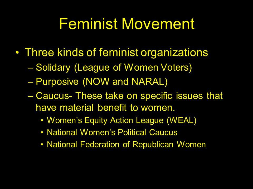 Feminist Movement Three kinds of feminist organizations
