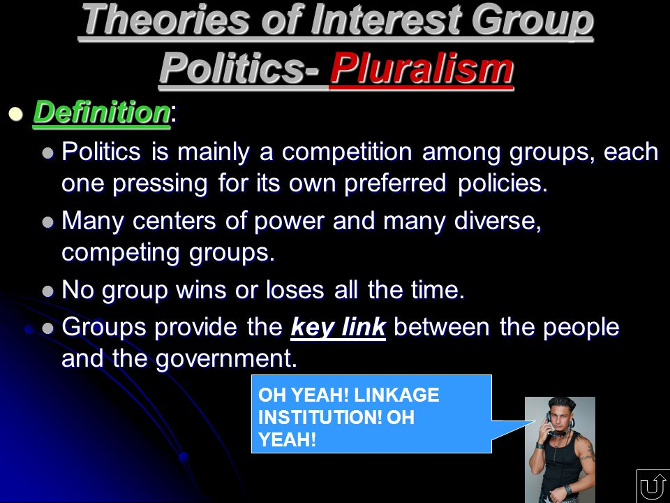 Theories of Interest Group Politics- Pluralism