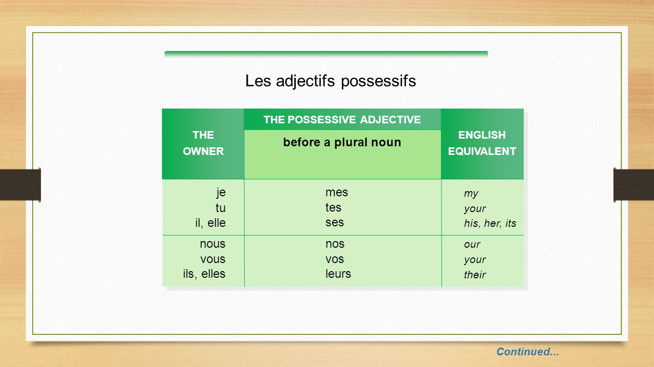 THE POSSESSIVE ADJECTIVE