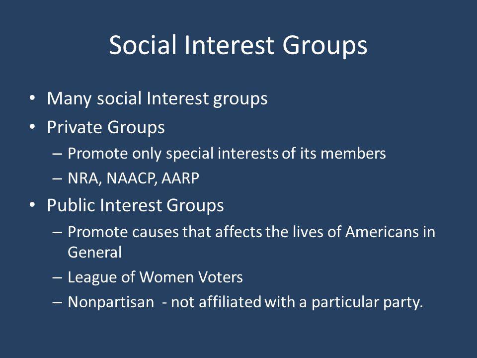 Social Interest Groups