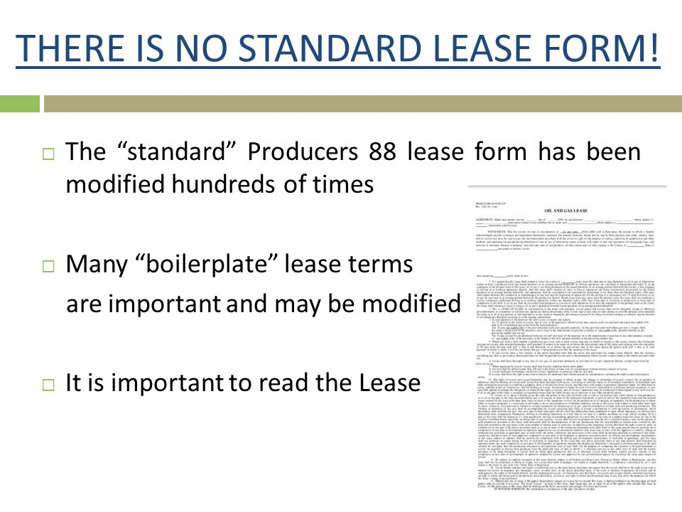 THERE IS NO STANDARD LEASE FORM!