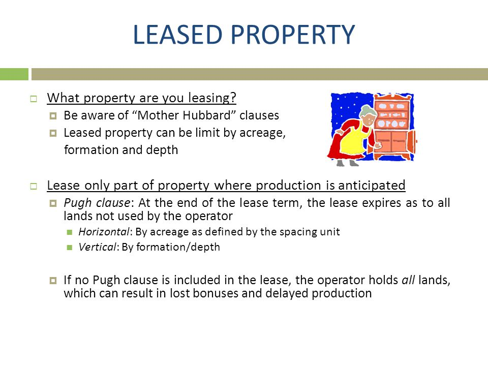 LEASED PROPERTY What property are you leasing