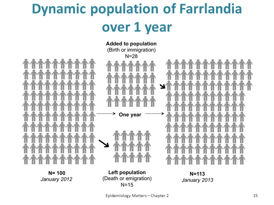 Dynamic population of Farrlandia over 1 year