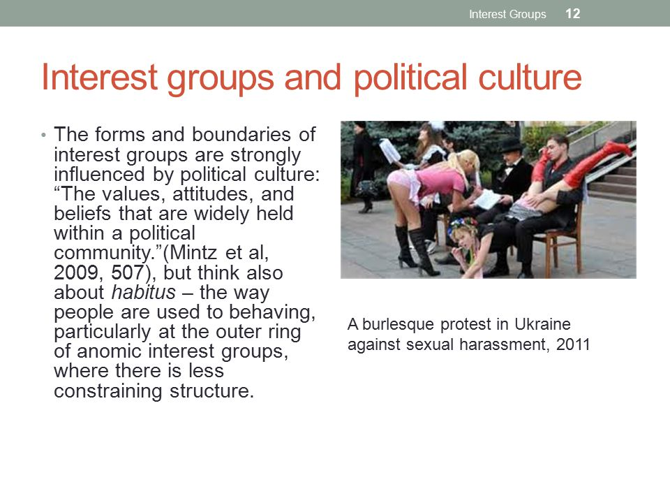 Interest groups and political culture