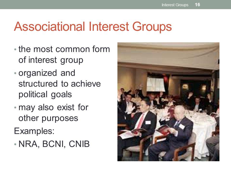 Associational Interest Groups