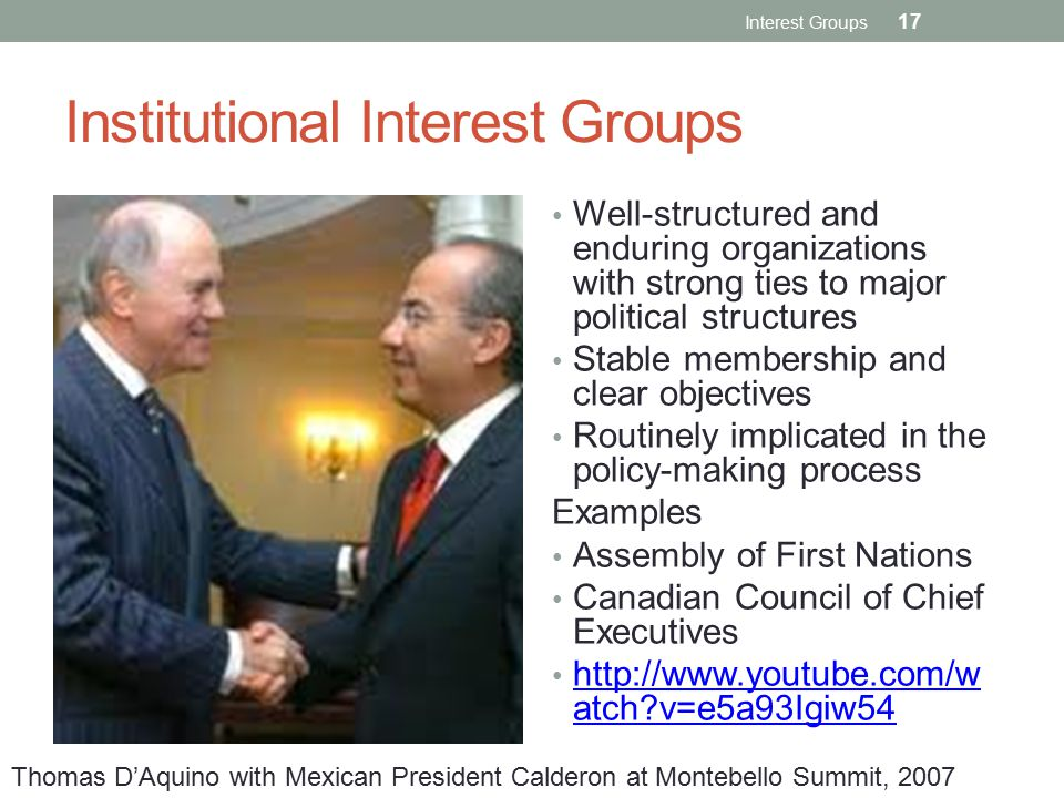 Institutional Interest Groups