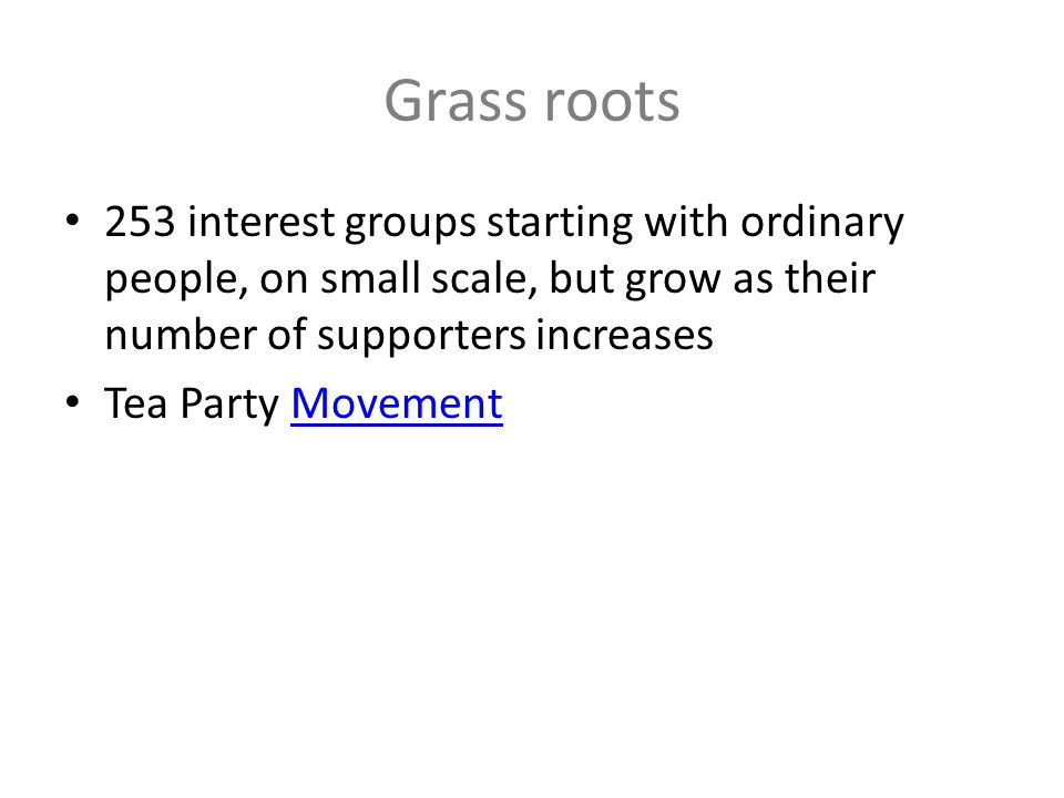 Grass roots 253 interest groups starting with ordinary people, on small scale, but grow as their number of supporters increases.