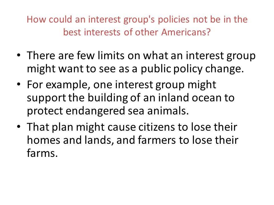 How could an interest group s policies not be in the best interests of other Americans