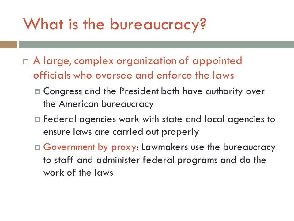 What is the bureaucracy