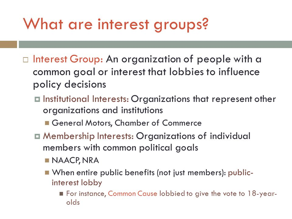 What are interest groups