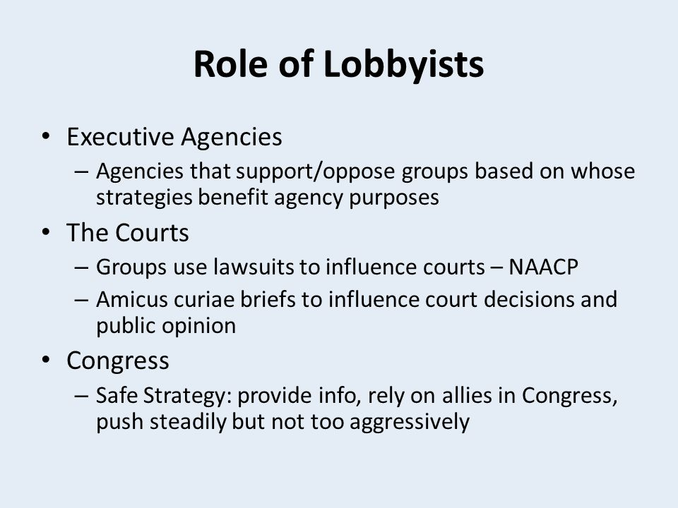 Role of Lobbyists Executive Agencies The Courts Congress