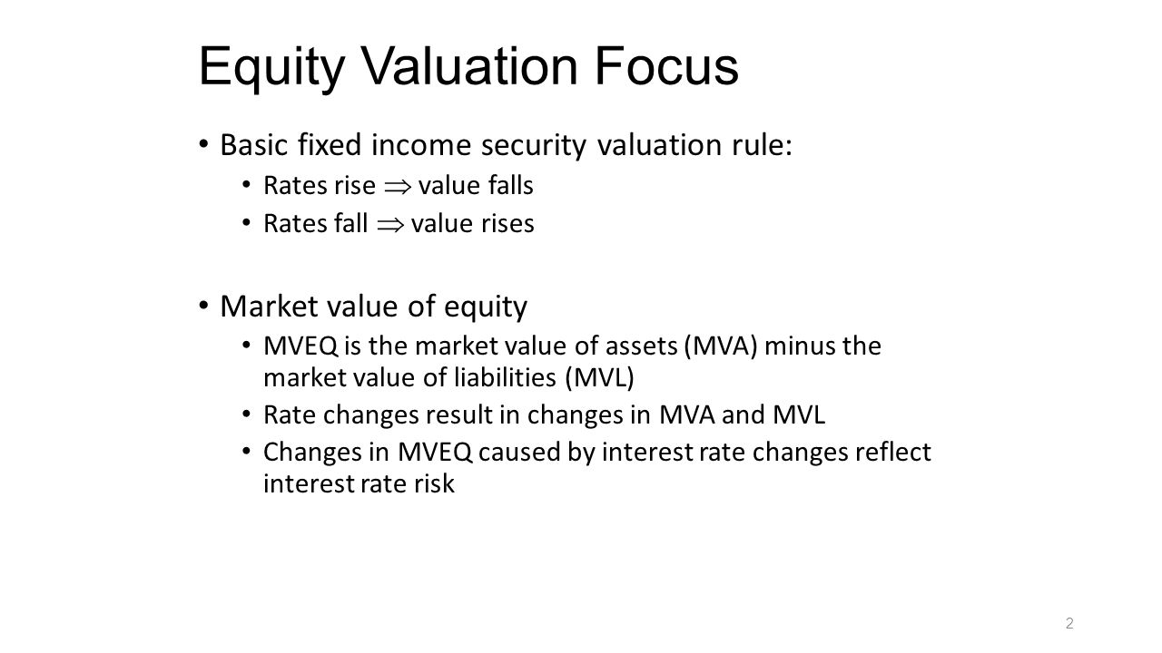 Equity Valuation Focus