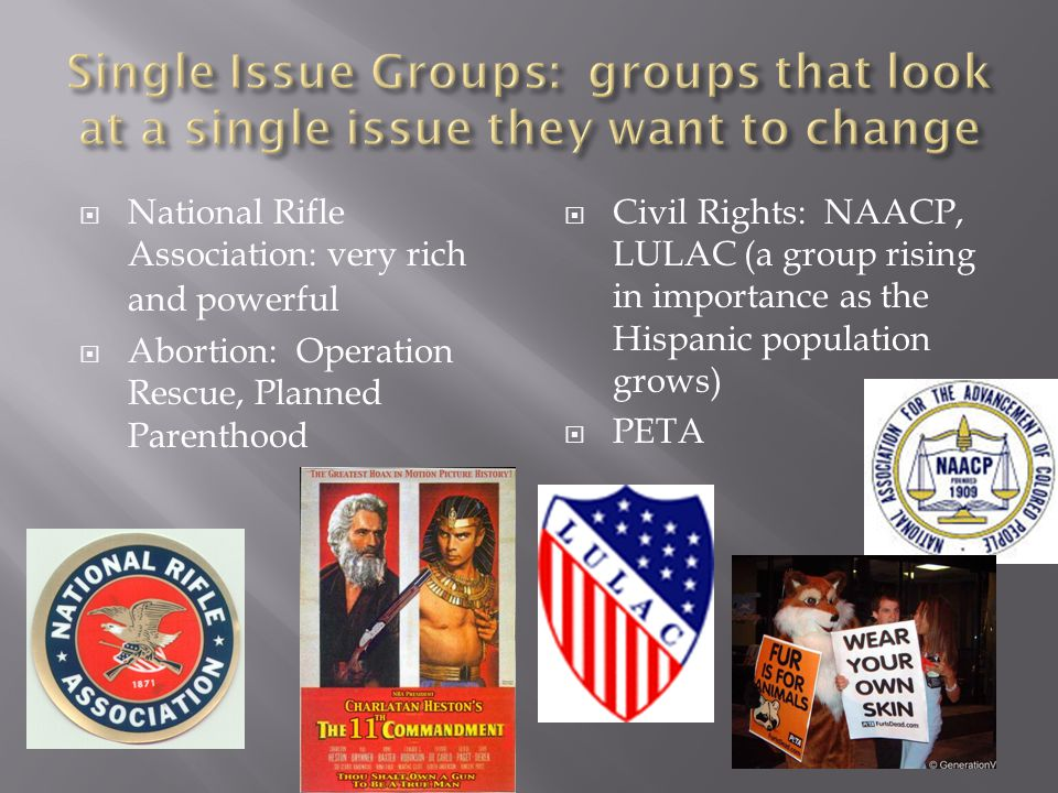 Single Issue Groups: groups that look at a single issue they want to change