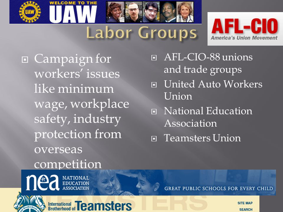 Labor Groups Campaign for workers' issues like minimum wage, workplace safety, industry protection from overseas competition.