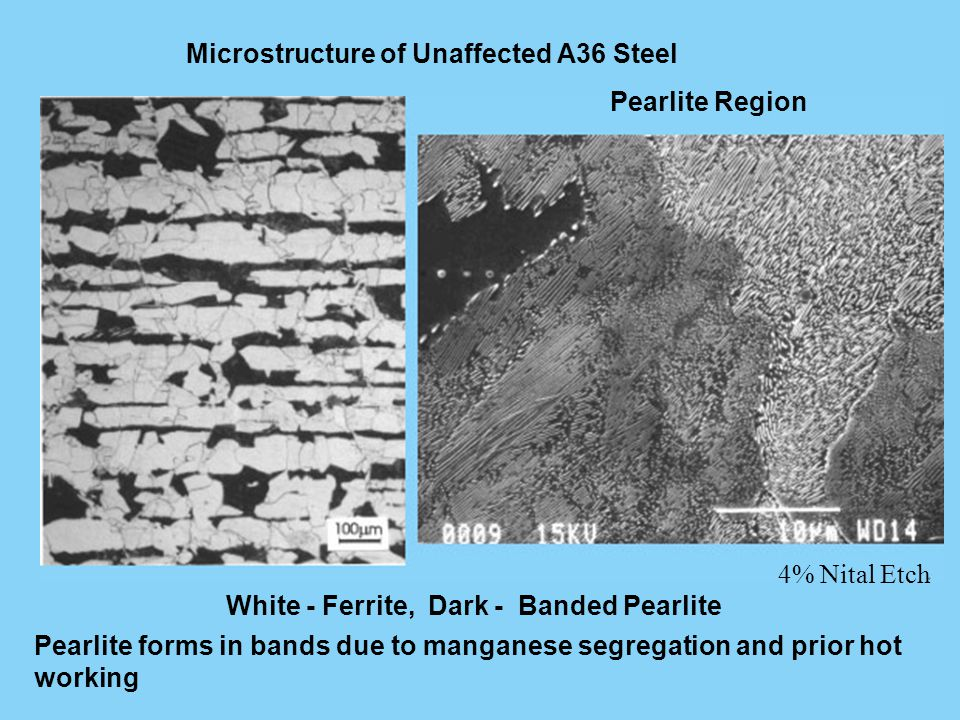Microstructure of Unaffected A36 Steel