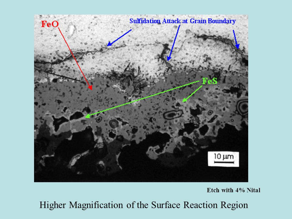 Higher Magnification of the Surface Reaction Region