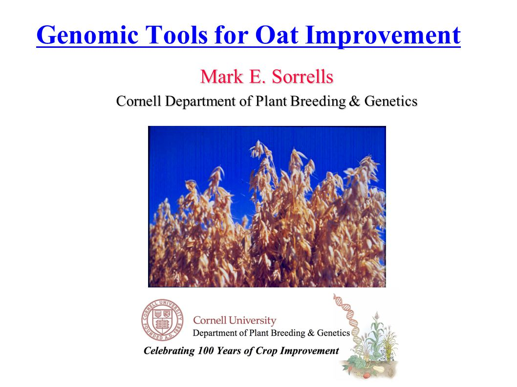 Genomic Tools for Oat Improvement