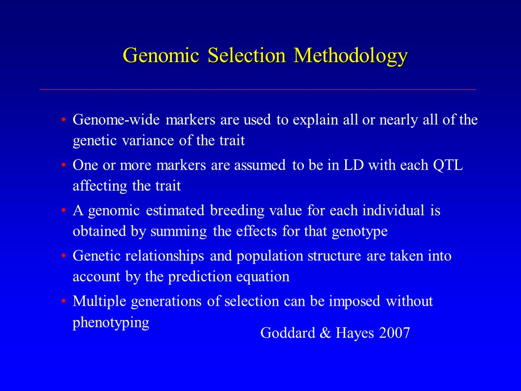 Genomic Selection Methodology