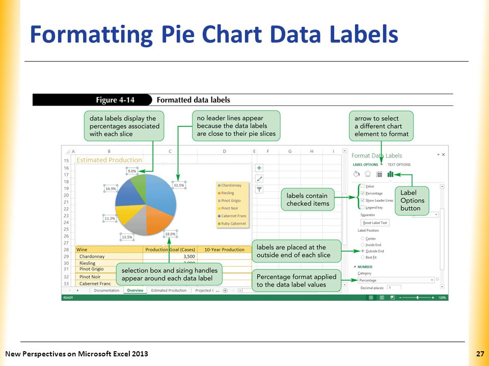 Formatting Pie Chart Data Labels