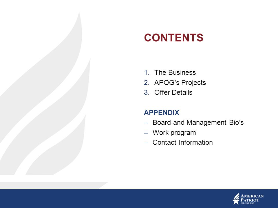 CONTENTS The Business APOG's Projects Offer Details APPENDIX