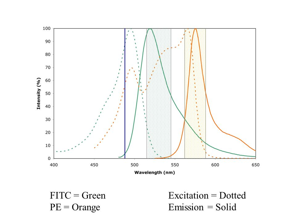 FITC = Green PE = Orange Excitation = Dotted Emission = Solid