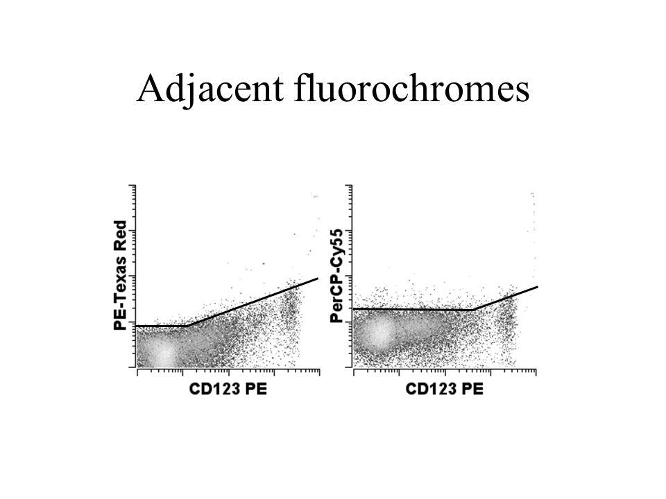 Adjacent fluorochromes