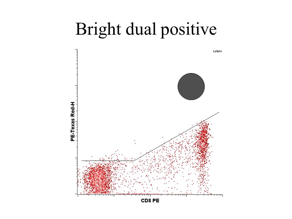 Bright dual positive