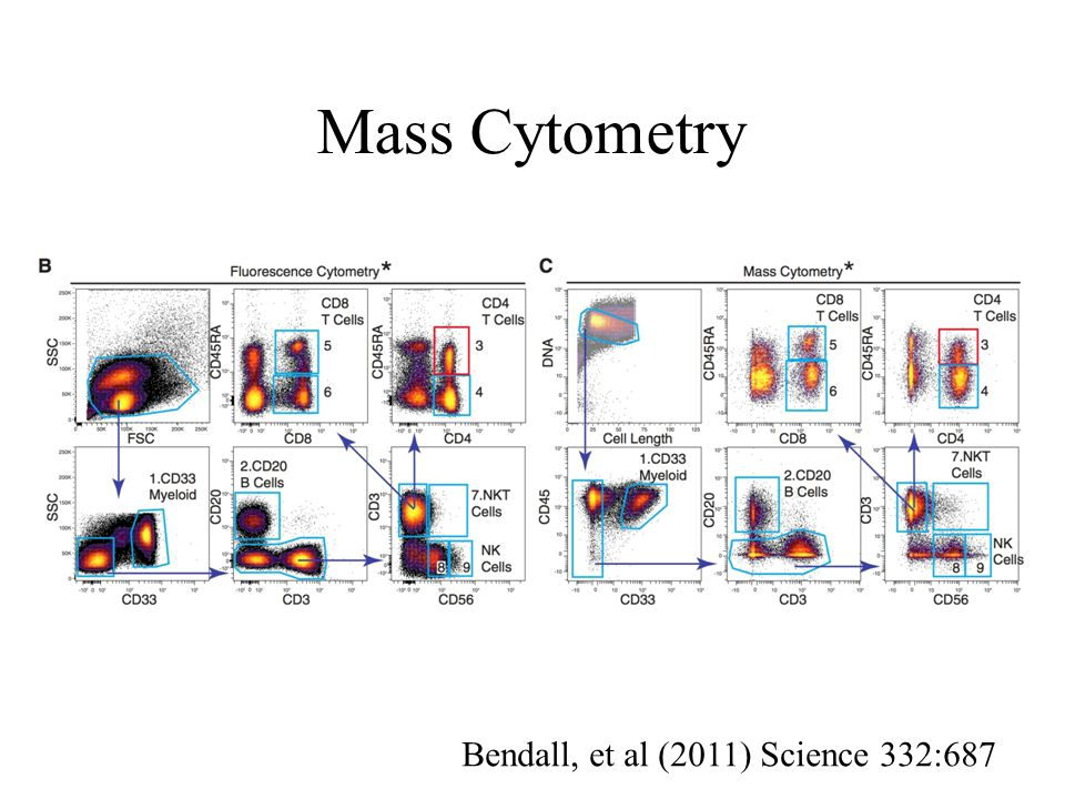 Mass Cytometry Bendall, et al (2011) Science 332:687