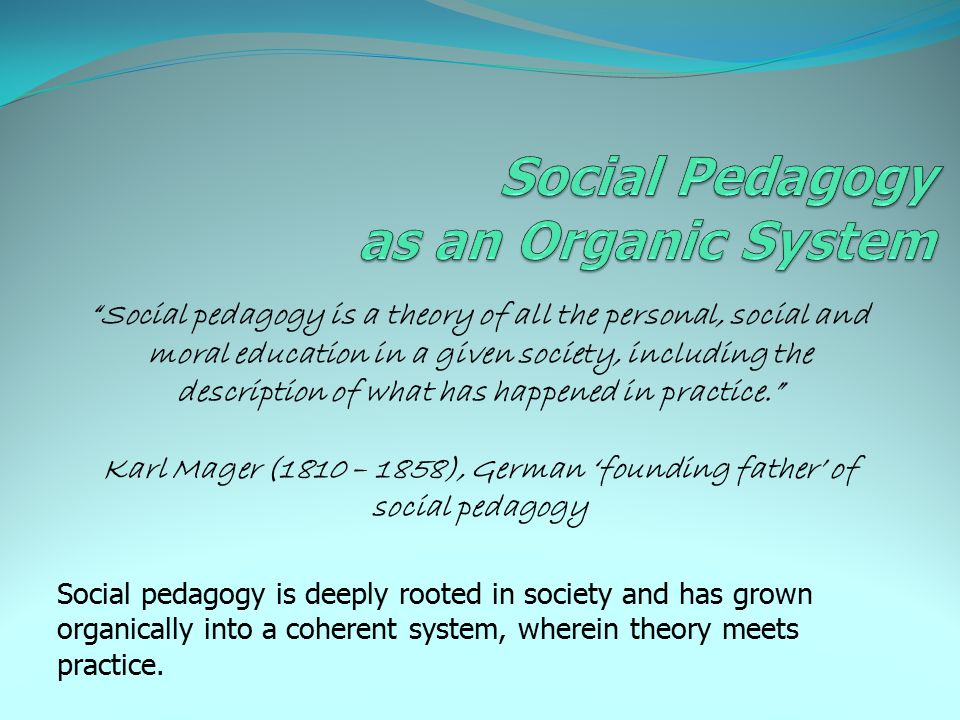 Social Pedagogy as an Organic System