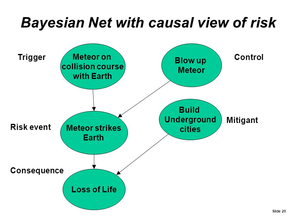 Bayesian Net with causal view of risk