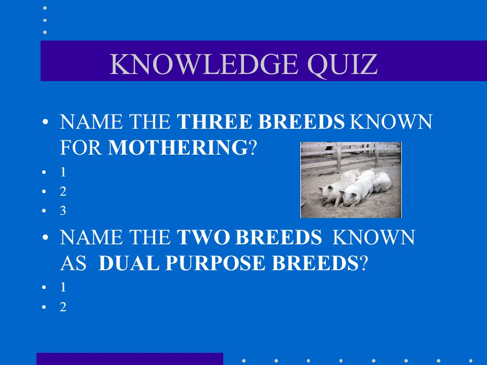KNOWLEDGE QUIZ NAME THE THREE BREEDS KNOWN FOR MOTHERING