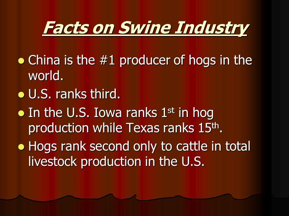 Facts on Swine Industry