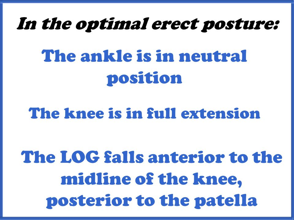 In the optimal erect posture: