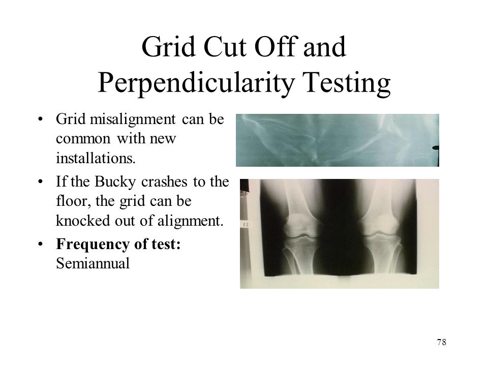 Grid Cut Off and Perpendicularity Testing