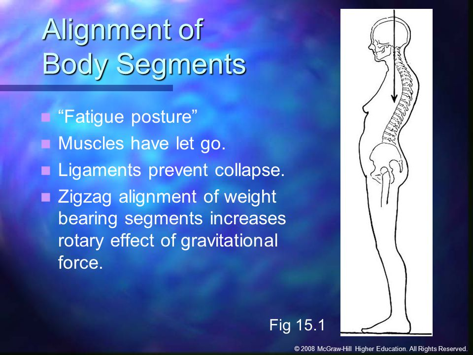 Alignment of Body Segments