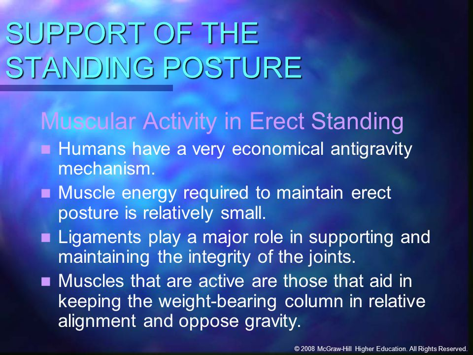 SUPPORT OF THE STANDING POSTURE
