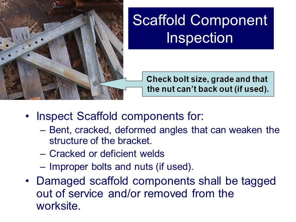 Scaffold Component Inspection