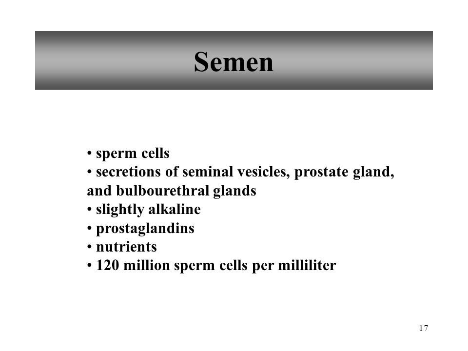 Semen sperm cells. secretions of seminal vesicles, prostate gland, and bulbourethral glands. slightly alkaline.
