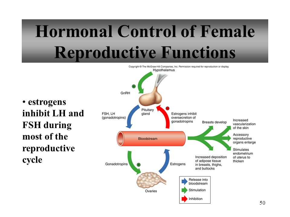 Hormonal Control of Female Reproductive Functions