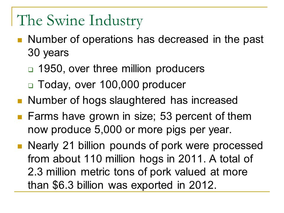 The Swine Industry Number of operations has decreased in the past 30 years. 1950, over three million producers.