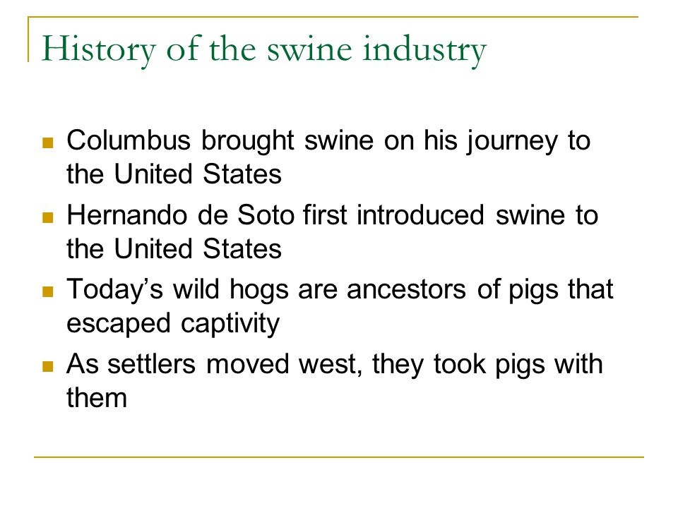 History of the swine industry