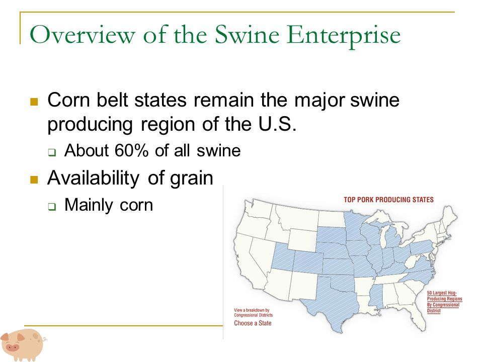 Overview of the Swine Enterprise