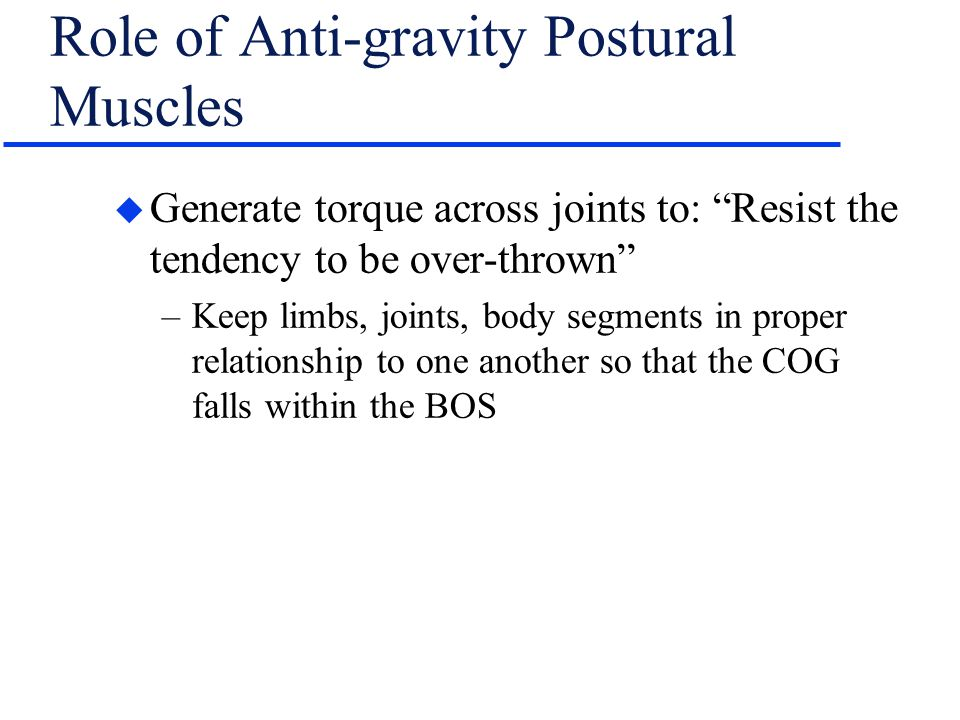 Role of Anti-gravity Postural Muscles