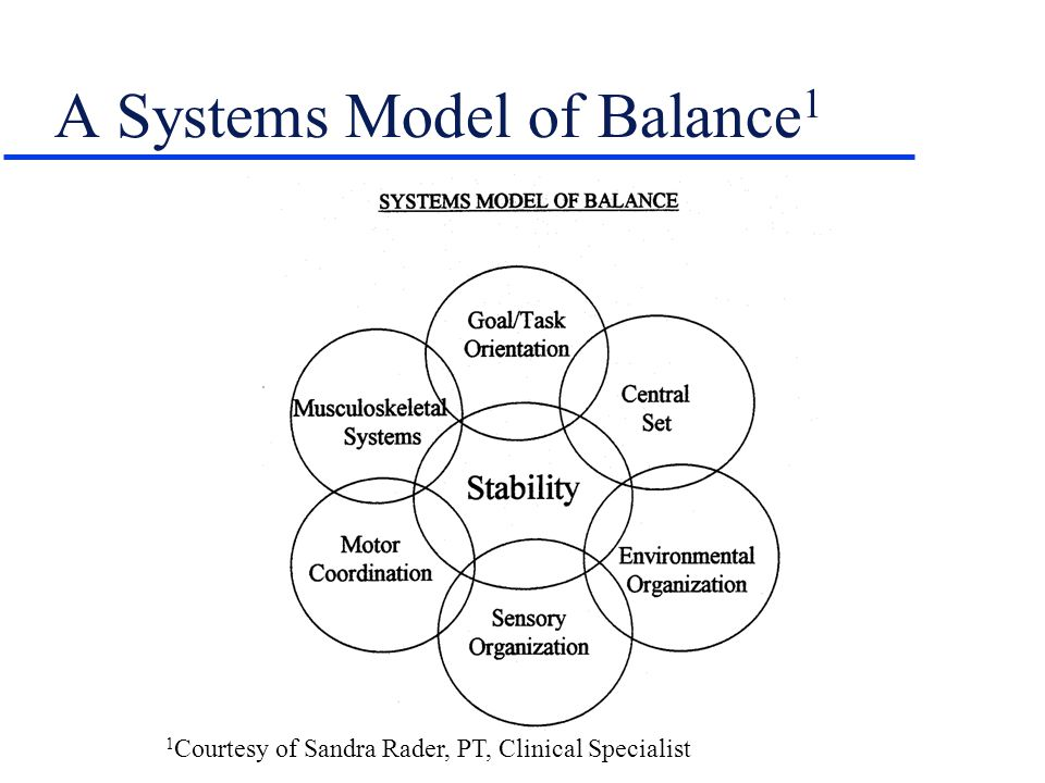 A Systems Model of Balance1