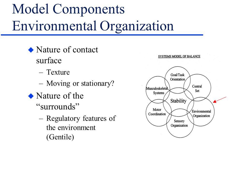 Model Components Environmental Organization
