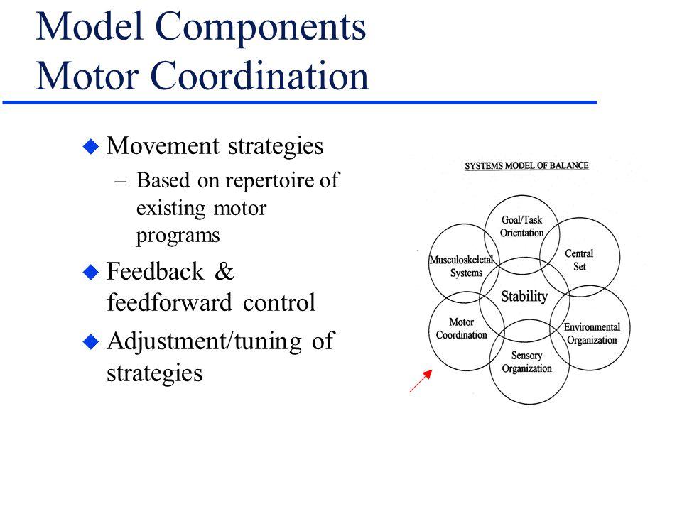 Model Components Motor Coordination