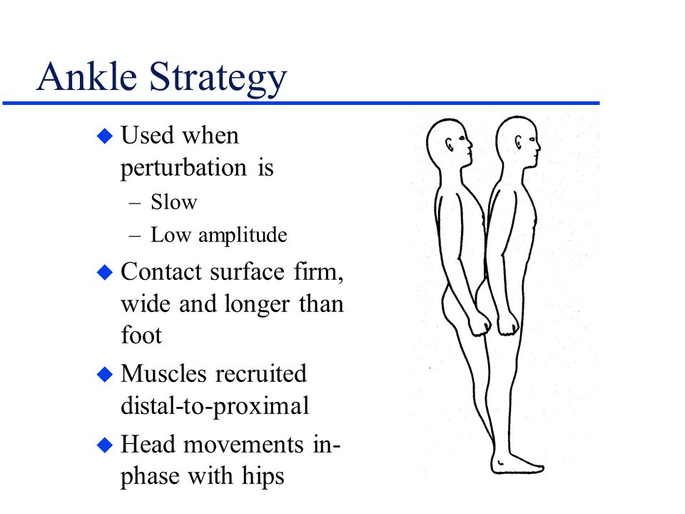 Ankle Strategy Used when perturbation is