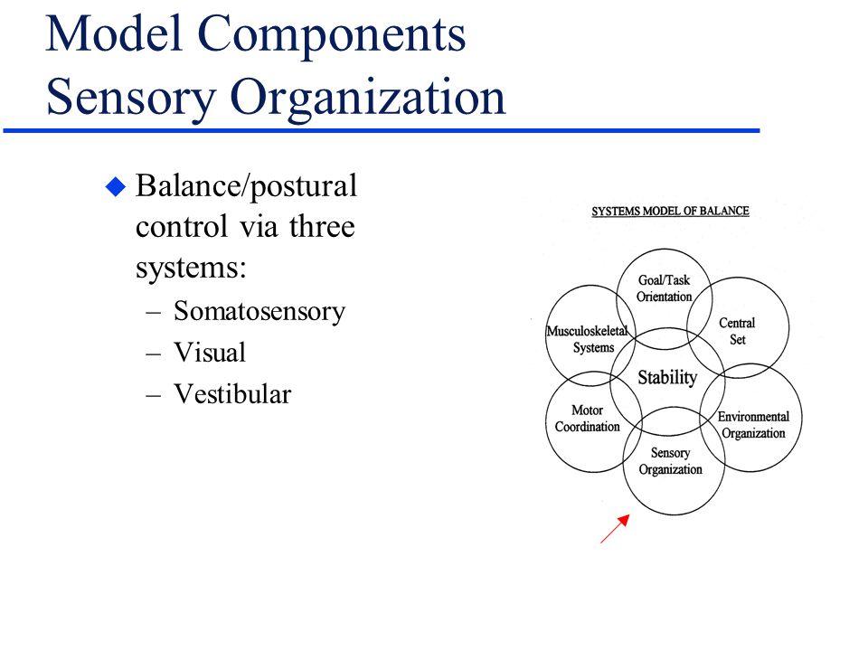 Model Components Sensory Organization