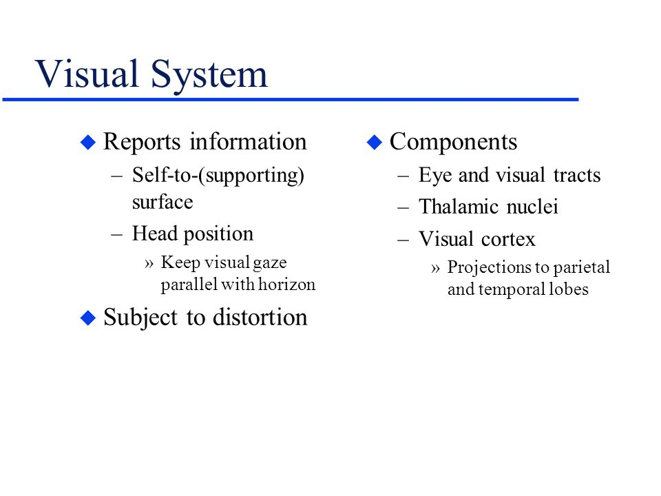 Visual System Reports information Subject to distortion Components